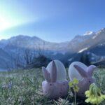 Schöne Ostern! 🐣